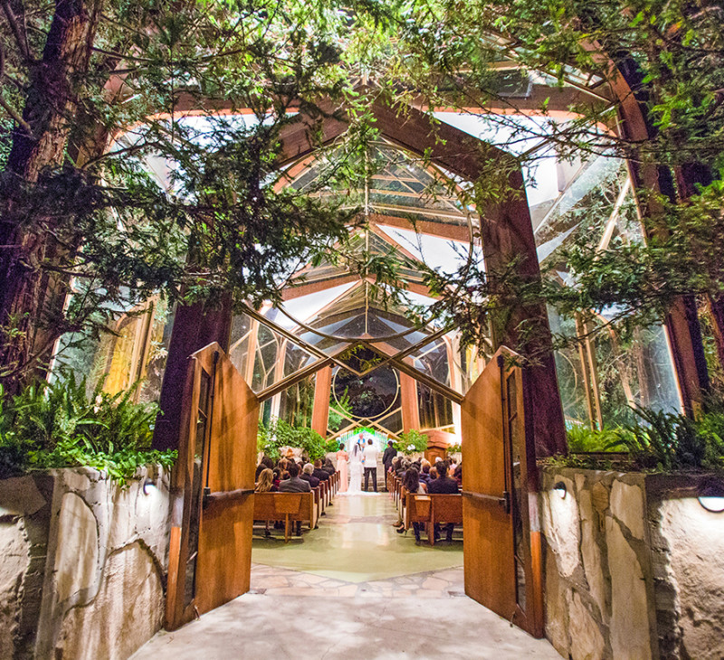 Imagine A Picturesque Ceremony Among Forest Of Trees With Sunlight Glimmering Down Upon Sea Guests Straight Out Fairytale Right